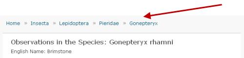 hierarchy_screenshot_1_500.png