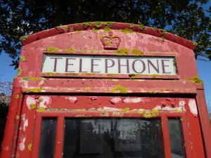 'Telephone Box Lichen'