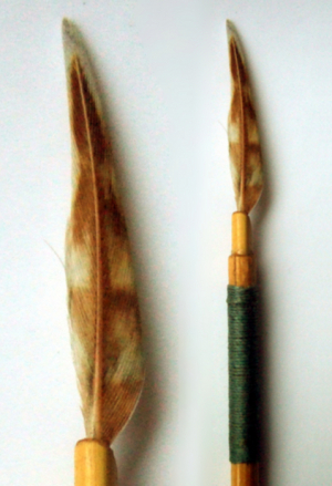 Woodcock pin feather