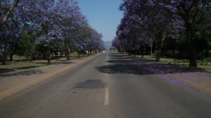 Purple rain (Lydenburg)