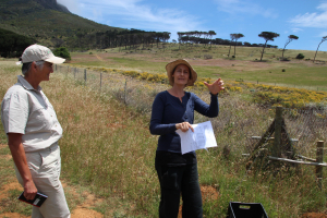 The Paddock Renosterveld Restoration Experiment