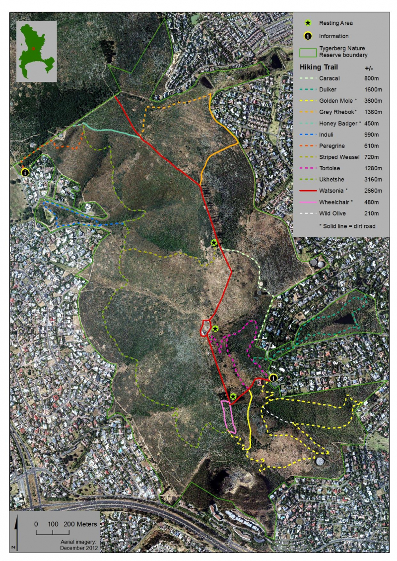 Tygerberg Nature Reserve | Project | Southern Africa | iSpot