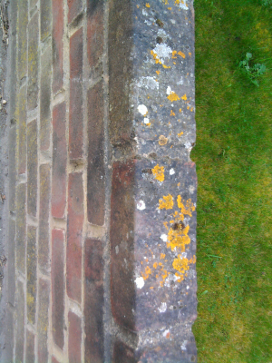 Weathered bricks with lichens, rough bricks without